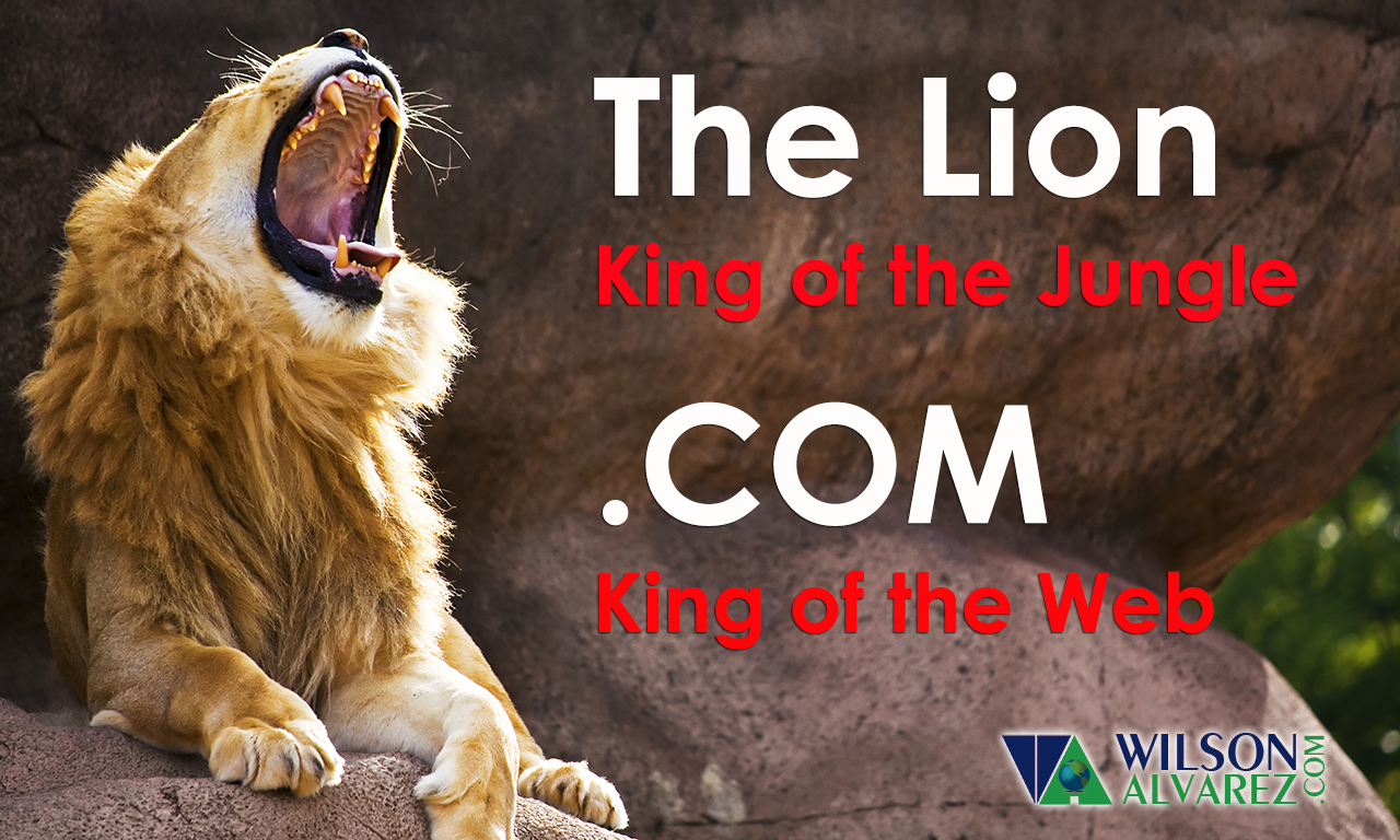 .com, King of the Web